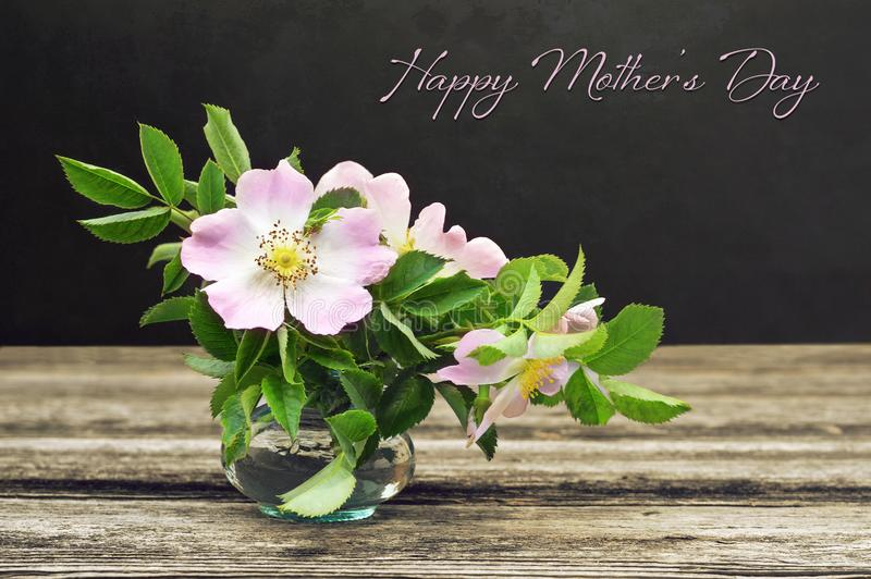 Happy Mothers Day card. Still life with wild roses on grunge background stock images