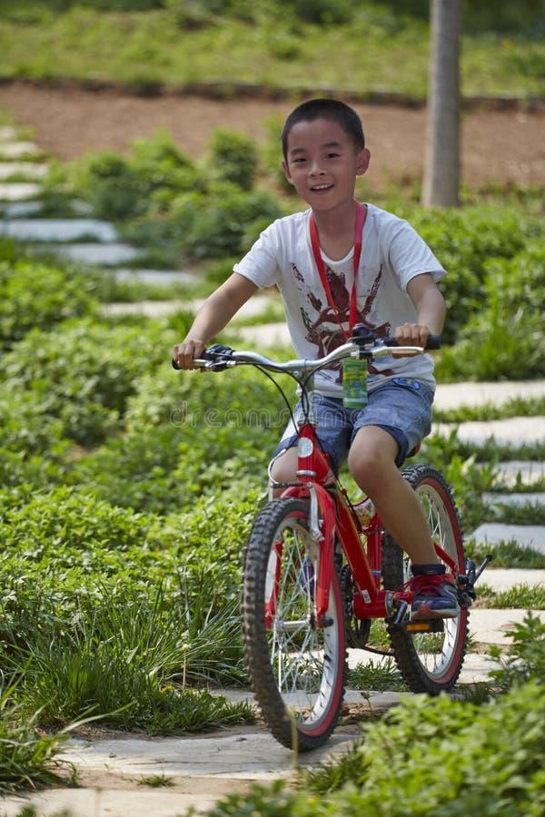 Free Happy Mountain Bike Rider Royalty Free Stock Photos - 174276958