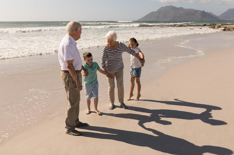 Happy multi-generation family holding hands and having fun on beach. Side view of happy multi-generation family holding hands and having fun on beach in the royalty free stock photography