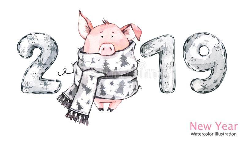 2019 Happy New Year banner. Cute pig in winter scarf with numbers. Watercolor illustration. Symbol of winter holidays. 2019 Happy New Year banner. Cute pig in vector illustration