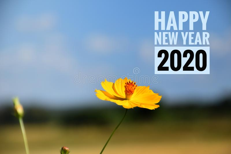 Happy New Year 2020 royalty free stock images