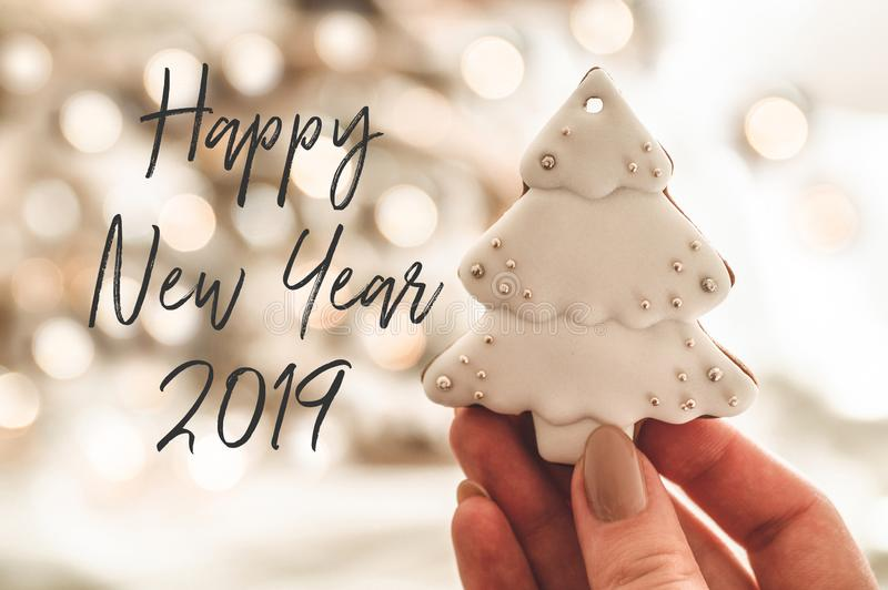Happy New Year. Female hands holding cookie shaped Christmas tree. Christmas mood. Concept of winter greeting. 2019 stock photos