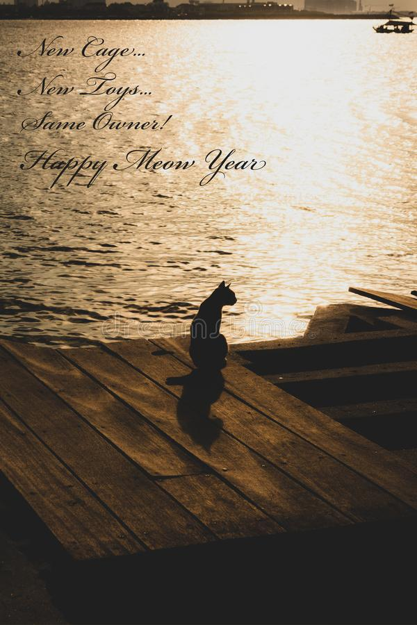Happy New Year Funny quote for cat. Happy New Year Funny quote for greeting card template. cat silhouette at sunset on beach royalty free stock images