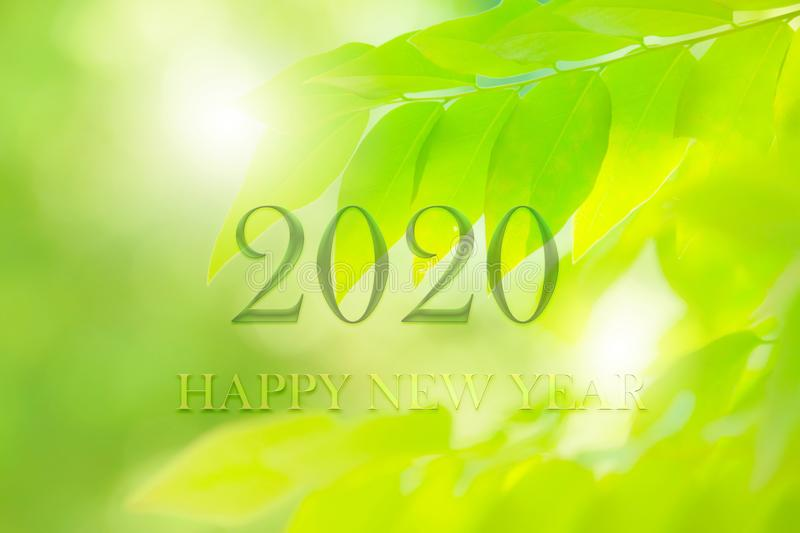 Happy New Year 2020 greeting card with fresh green leaf nature, number on Green leaves background,Nature eco concept,organic royalty free stock photos