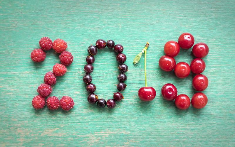 Happy new year 2019 made of berries on a blue wooden background stock image