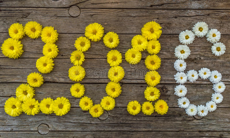 Happy new year 2016 made of flowers. On wooden background stock images