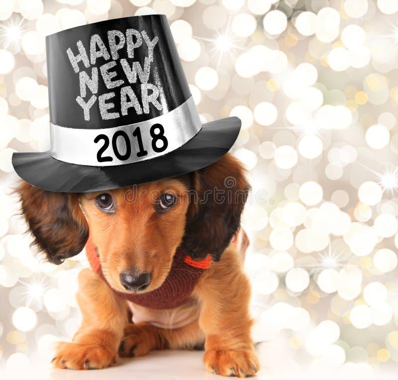 Happy New Year 2018 puppy stock image