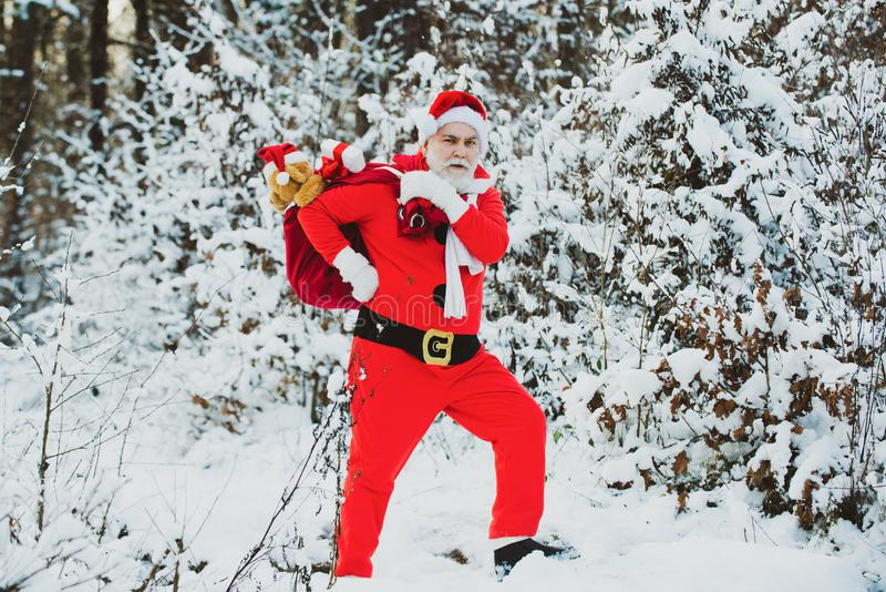 Happy new year. Santa Claus pulling huge bag of gifts on white nature background. Santa in the winter field. Merry stock image