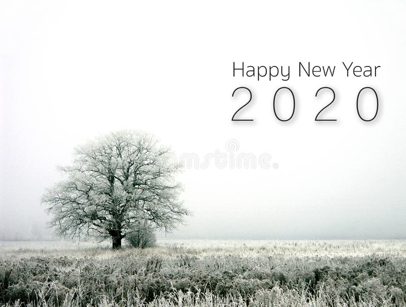 Happy new year 2020. winter landscape. With alone tree. horizontal version stock images