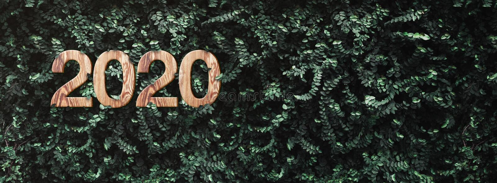 2020 happy new year wood texture number on Green leaves wall background,Nature eco concept,organic greeting card holiday.banner royalty free stock photography