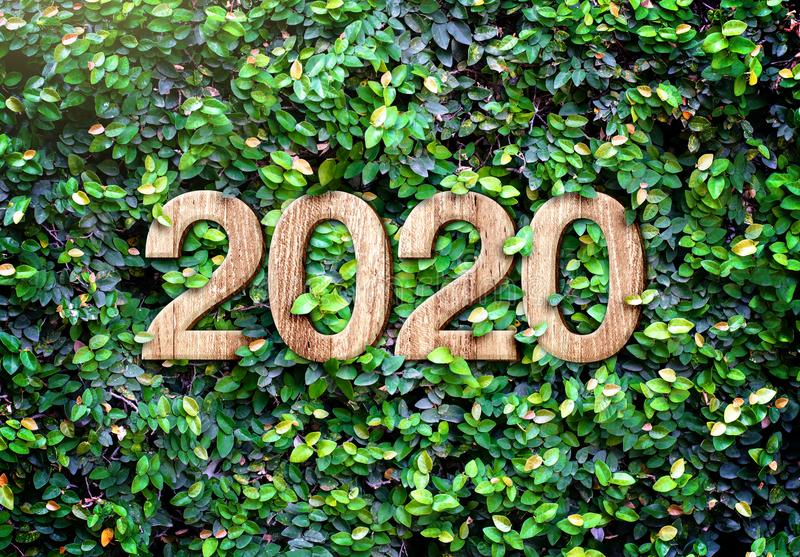 2020 happy new year wood texture number on Green leaves wall background,Nature eco concept,organic greeting card holiday.banner stock photography