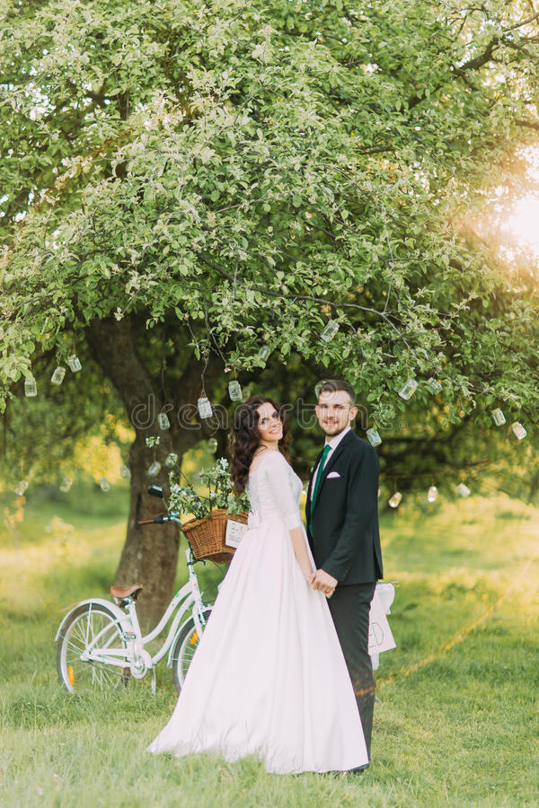 Happy newlywed couple posing on lawn in green sunny park. Bicycle near decorated tree at background stock photo