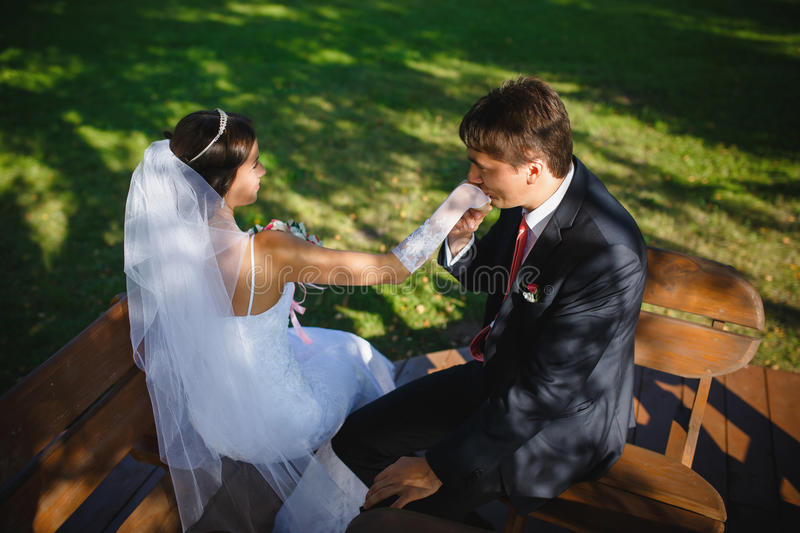 The happy newlyweds royalty free stock photography