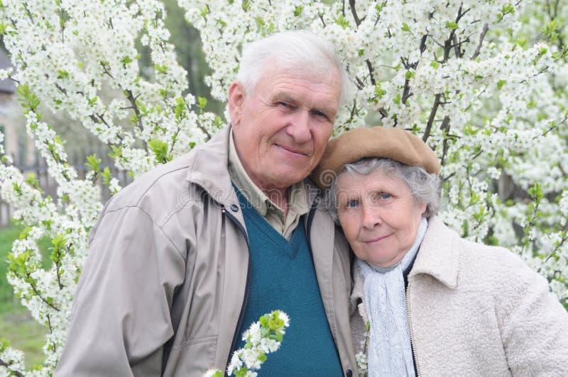 Happy old couple royalty free stock photo