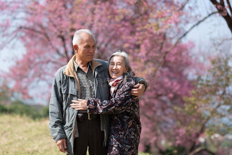 Happy old couple smiling in a park.mature couple with cherry blossom sakura tree.seniors lover family and healthcare concept.  royalty free stock image