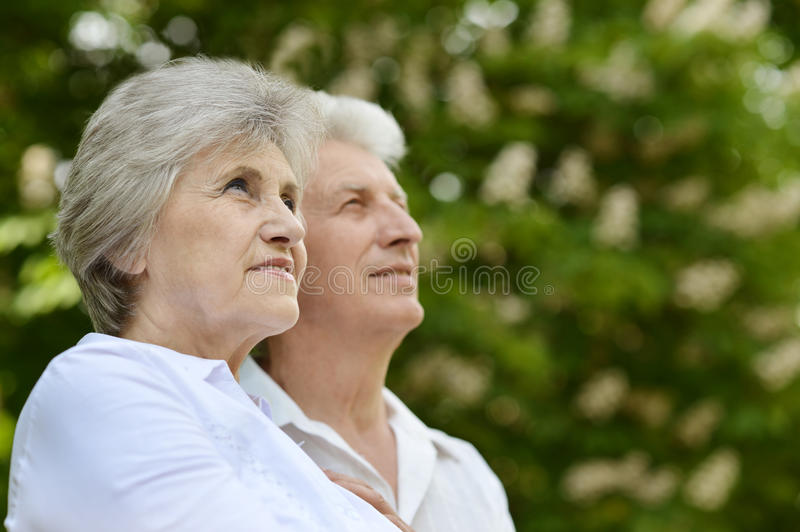 Happy older couple royalty free stock images