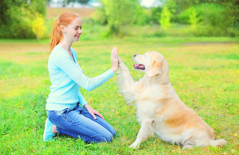 Happy owner woman training Golden Retriever dog on grass stock photos