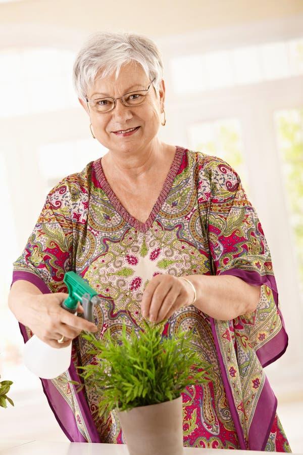 happy plant senior watering woman 免版税库存照片