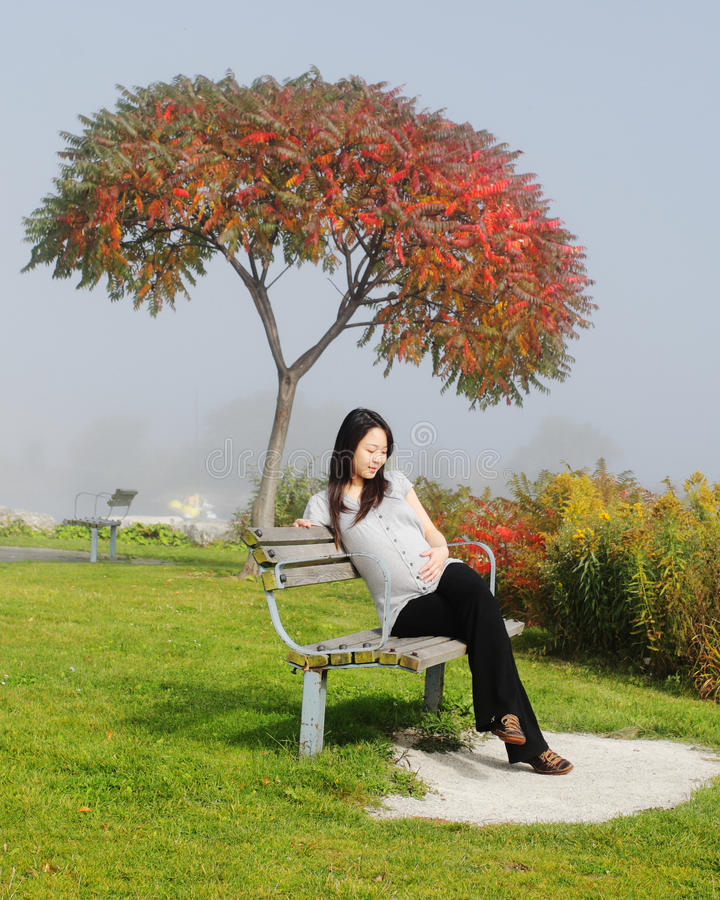 Happy pregnancy woman royalty free stock photography