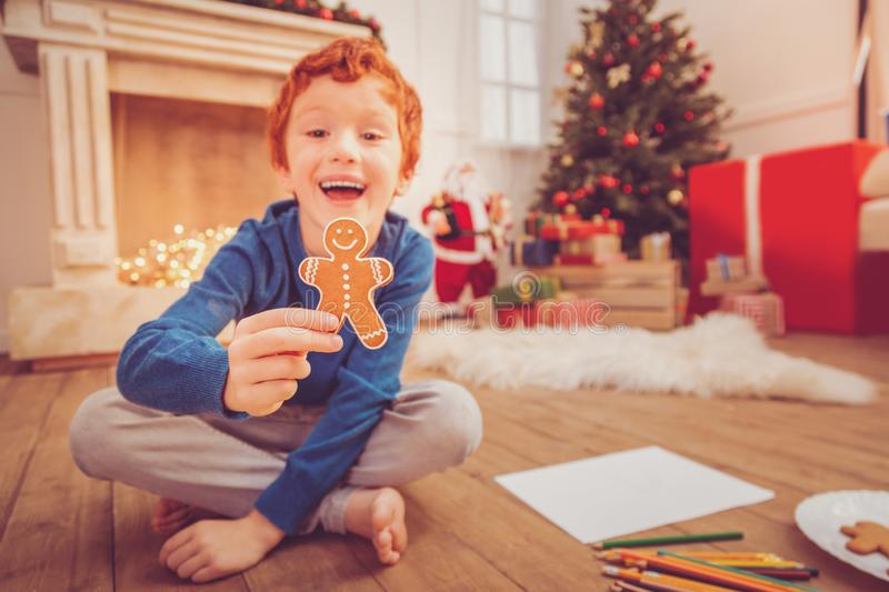 Happy red-haired boy showing gingerbread man royalty free stock photography
