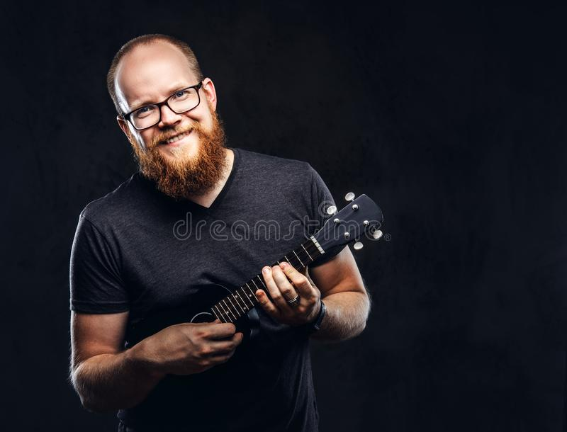 Redhead bearded male musician wearing glasses dressed in a gray t-shirt playing on a ukulele. Isolated on dark textured. Happy redhead bearded male musician stock photography