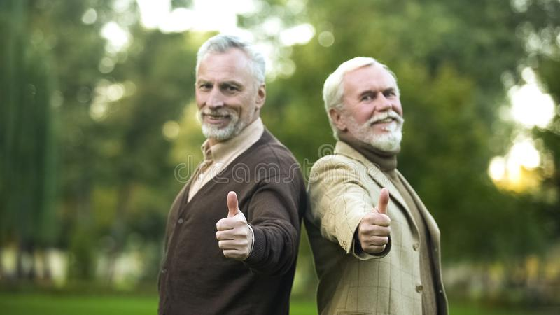 Happy retired gentlemen showing thumbs up and looking in camera, companions stock images