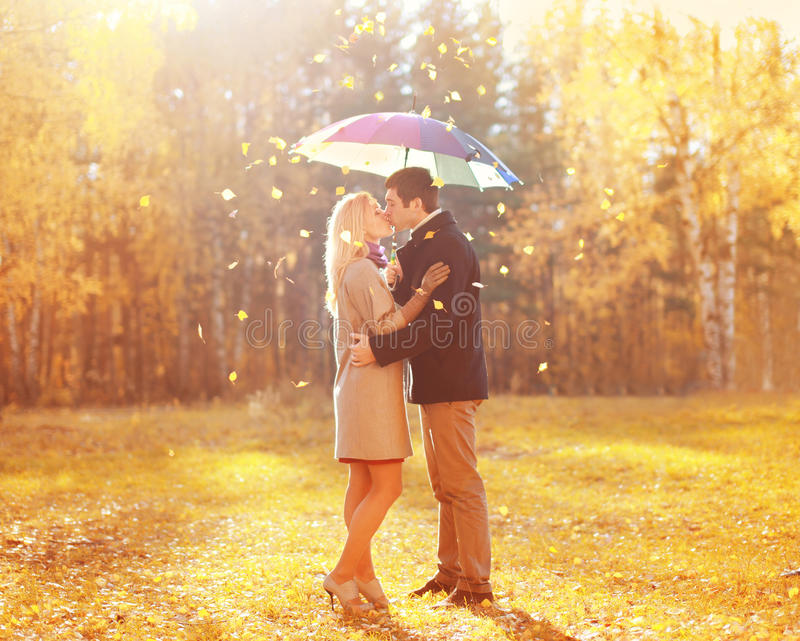 Happy romantic kissing couple in love with colorful umbrella together at warm sunny day over yellow flying leafs stock photos