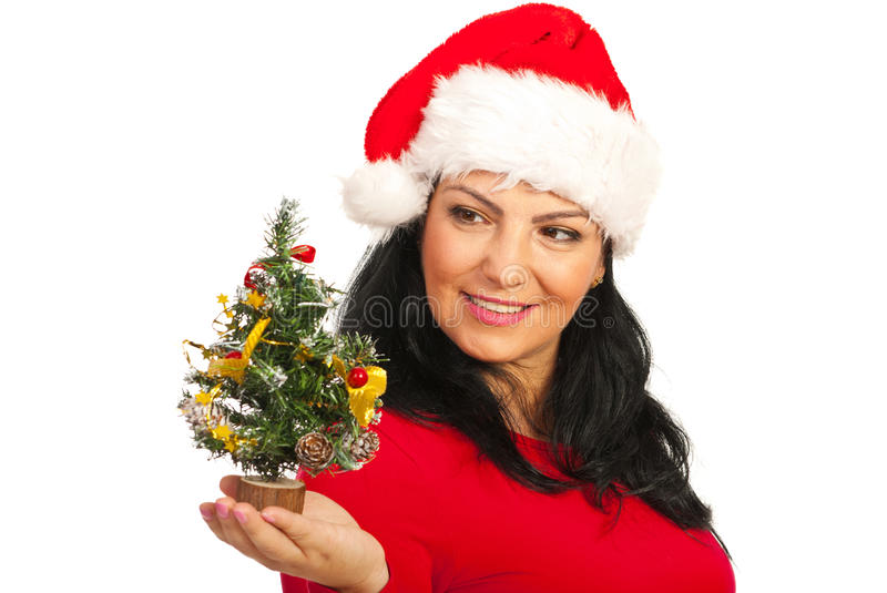 Download Happy Santa Woman Holding Tree Stock Image - Image of happiness, hand: 27686963