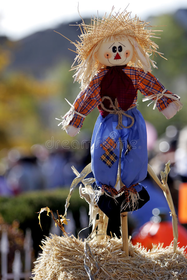 Free Happy Scarecrow 1 Stock Photography - 861672