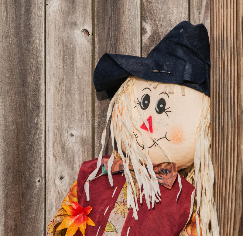 Download Happy Scarecrow stock photo. Image of face, yellow, scarecrow - 26660104