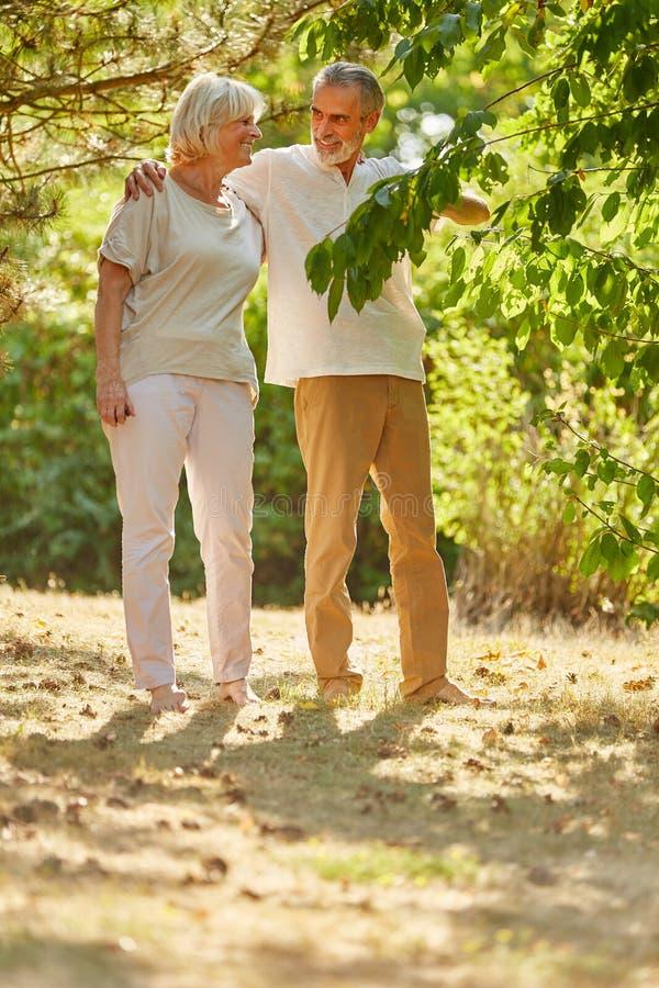 Happy senior citizens in summer. Happy senior retired citizens in summer in the nature stock photo