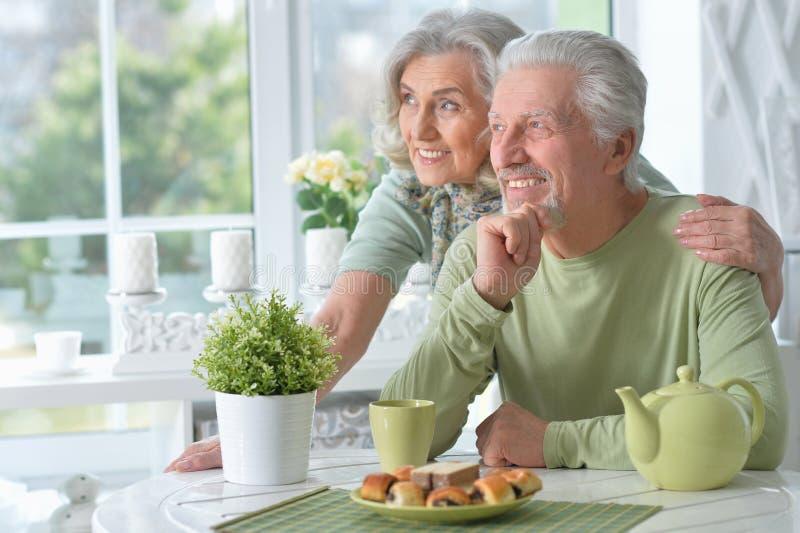 Portrait of happy senior couple drinking tea royalty free stock photography