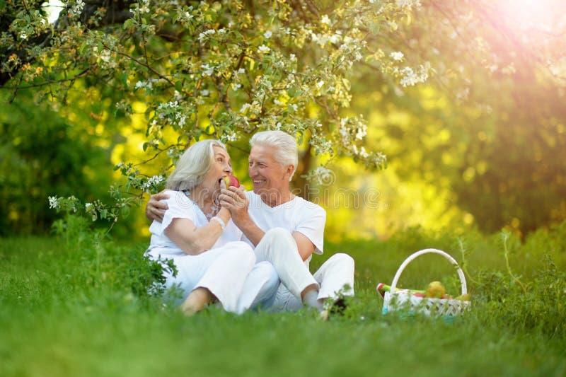 Portrait of happy senior couple having picnic. Happy senior couple having picnic in summer park stock image