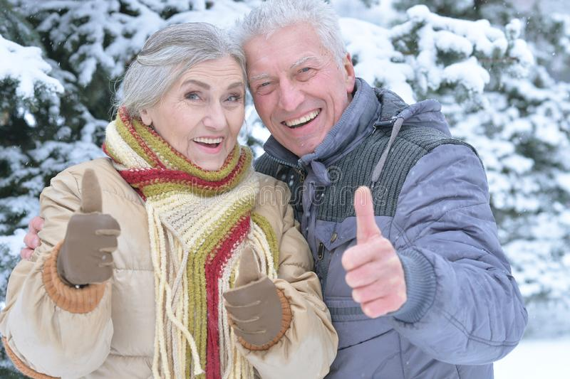 Close up portrait of happy senior couple with thumbs up at snowy winter park stock photography