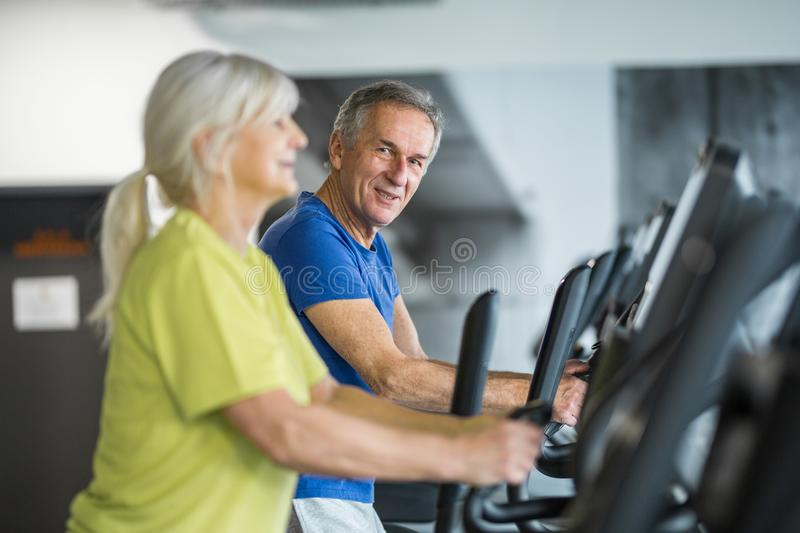 Happy senior couple training on stair stepper at gym royalty free stock image