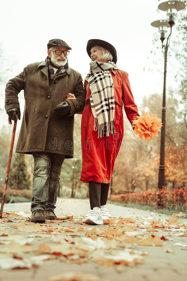 Happy senior couple walking hand in hand in park royalty free stock images