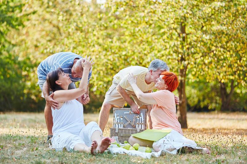 Happy senior couples making a picnic royalty free stock photography