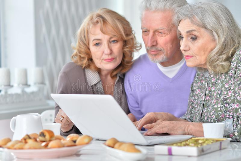 Portrait of senior people with laptop drinking tea royalty free stock photo