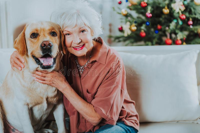 Happy senior woman is enjoying time with dog royalty free stock photography