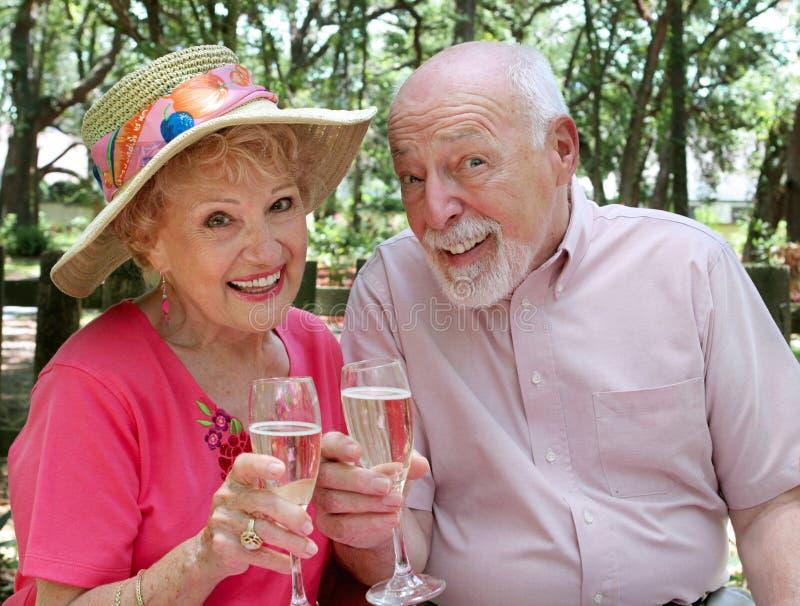 Happy Seniors Toasting royalty free stock photography