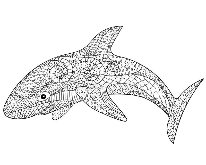 Happy Shark With High Details. Stock Vector - Illustration of drawn ...