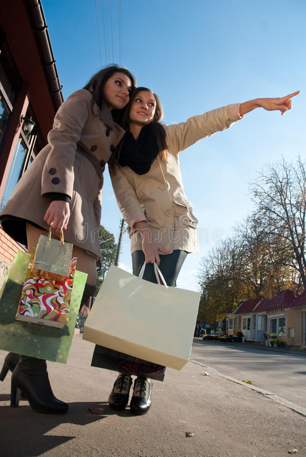 Download Happy Shopping: Two Young Women With Bags Stock Photos - Image: 21898953