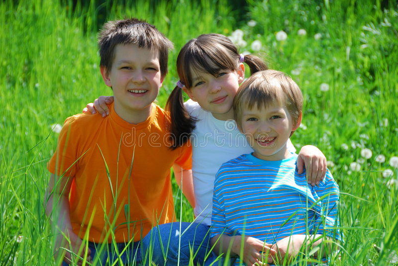 Happy siblings in meadow royalty free stock photos