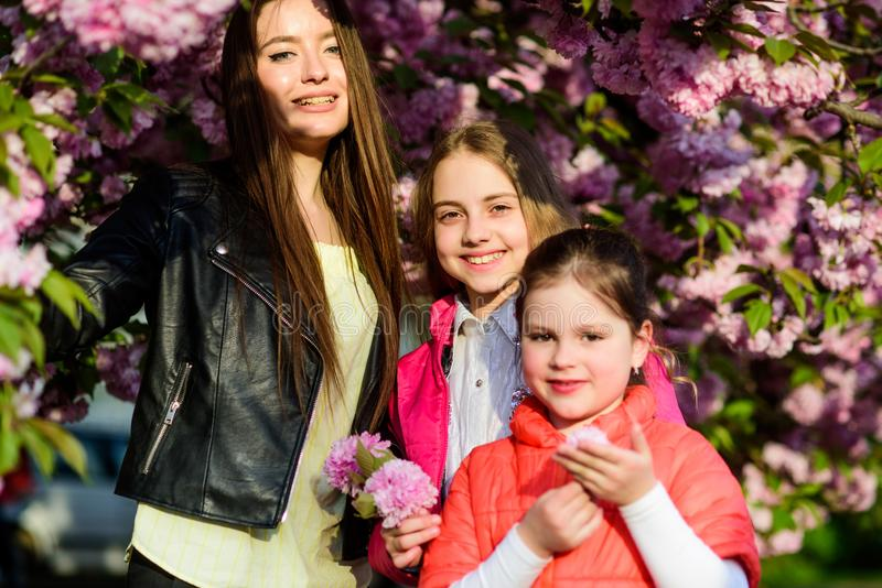 Happy sisters in cherry flower. Sakura bloom. Natural beauty. Mothers day. family summer. small children and mother in stock photos