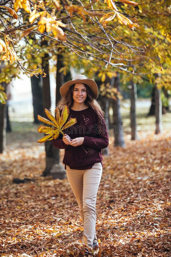 Happy smile young woman walking outdoors in autumn park in cozy sweater and hat. Warm sunny weather. Fall concept. Copy royalty free stock images