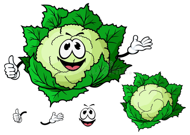 Happy smiling cartoon cauliflower vegetable. Happy smiling green cartoon cauliflower vegetable character waving with a second variation with no face and separate royalty free illustration