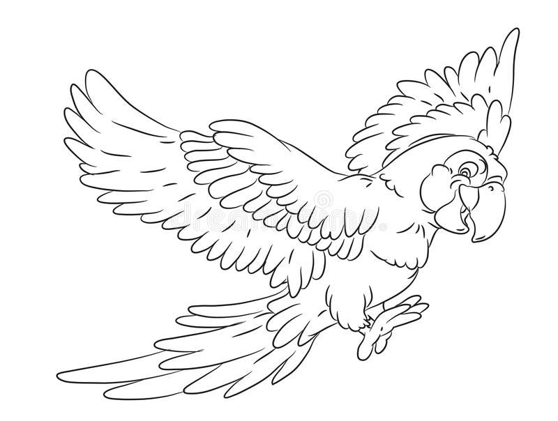 Happy Smiling Cartoon Flying Parrot Coloring Page Stock Illustration ...