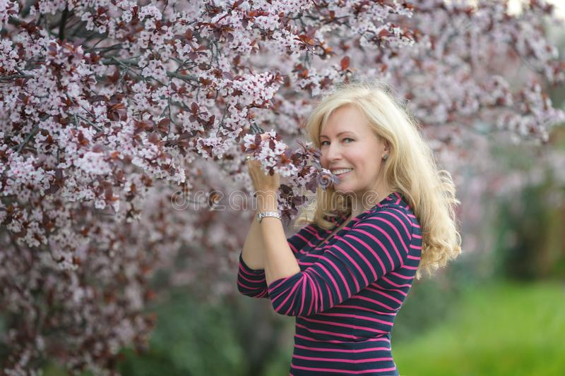 Happy smiling Caucasian blond woman with long hair smiles and happy near blossoming plum cherry tree, enjoys the blossom. Looking stock photo