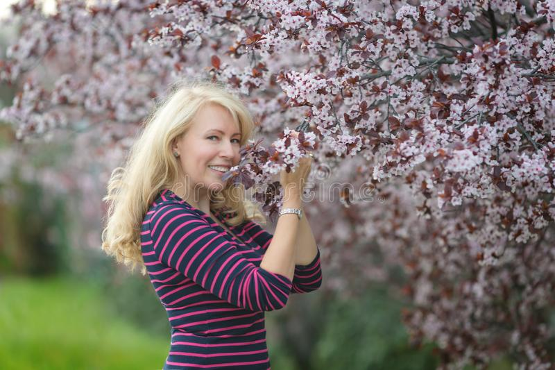 Happy smiling Caucasian blond woman with long hair smiles and happy near blossoming plum cherry tree, smiling. Looking right stock photos