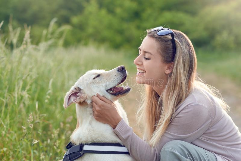 Happy smiling golden dog wearing a walking harness sitting facing its pretty young woman owne stock photography